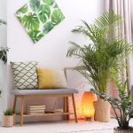 Indoor plants: 15 ideas to decorate with a green touch