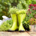 65+ Inexpensive diy garden ideas: Create a beautiful garden with little money!